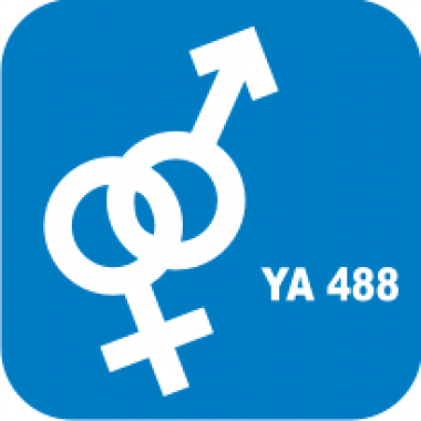 Трафарет для бодиарта Любовь Символ Женщина Мужчина код № YA 488