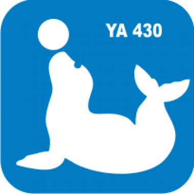 Трафарет для бодиарта Водный мир Морской котик с мячом код № YA 430